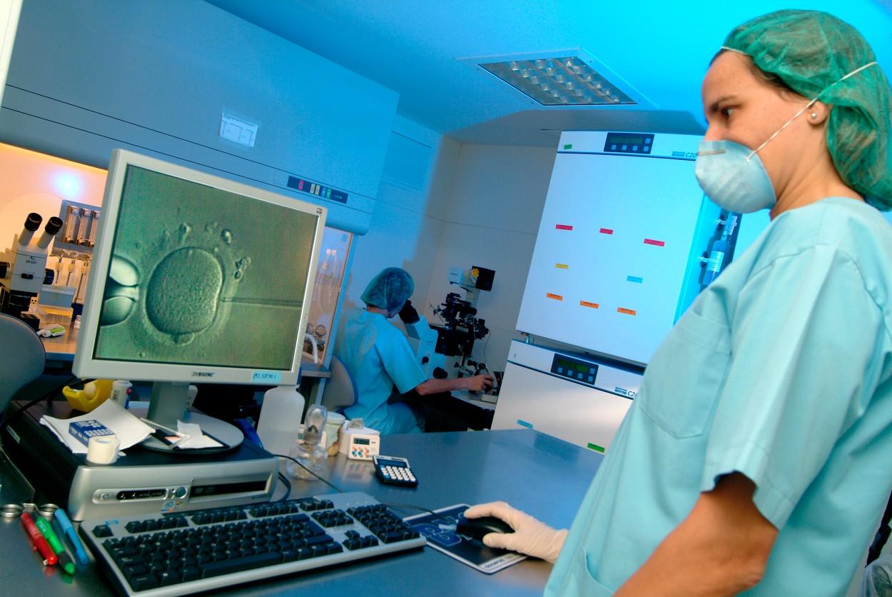 Embriolog